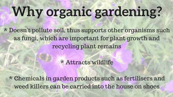 why-organic-gardening